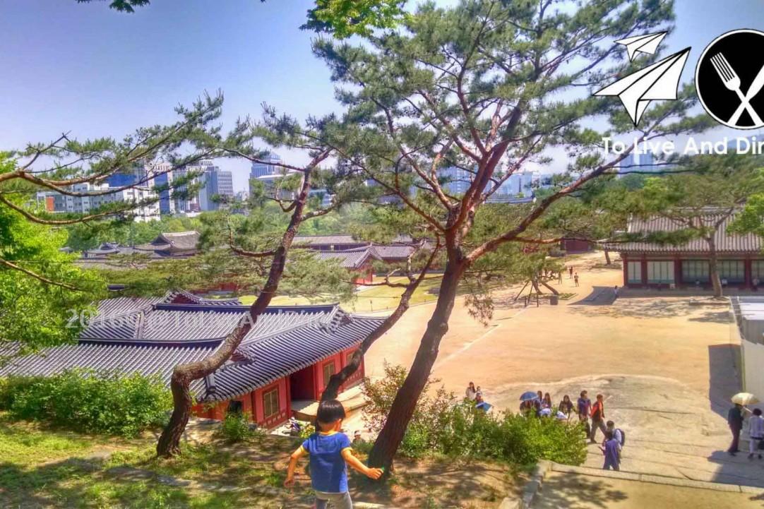 The view of Changgyeonggung