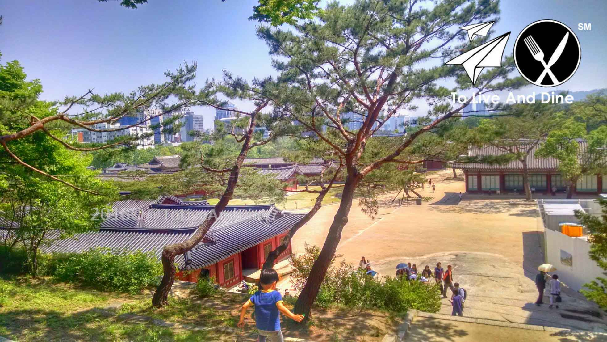 The view of Changgyeonggung